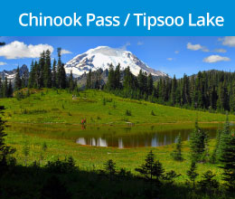 Rainier_chinookpass