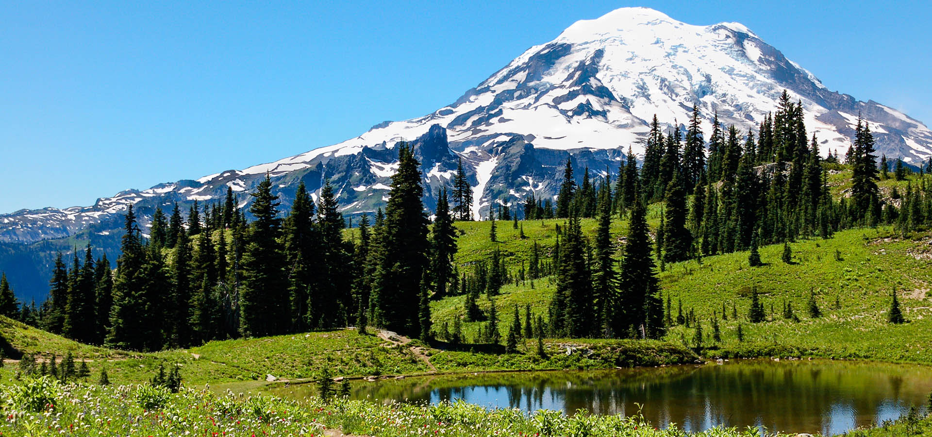 mount rainier Mount rainier (pronounced: / r eɪ ˈ n ɪər /), is the highest mountain of the cascade range of the pacific northwest, and the highest mountain in.