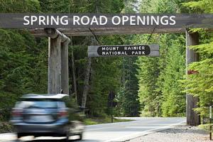 spring-road-openings